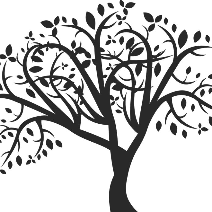 tree-701968_960_720